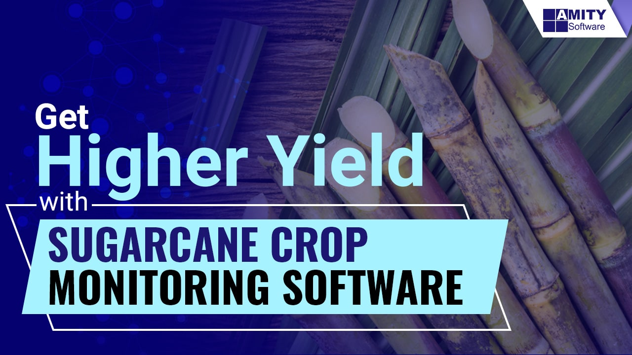 Sugarcane Crop Monitoring Software